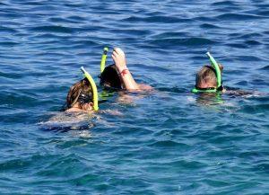 Snorkelling a l'ile aux chat