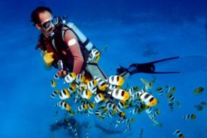 voyage plongée rodrigues